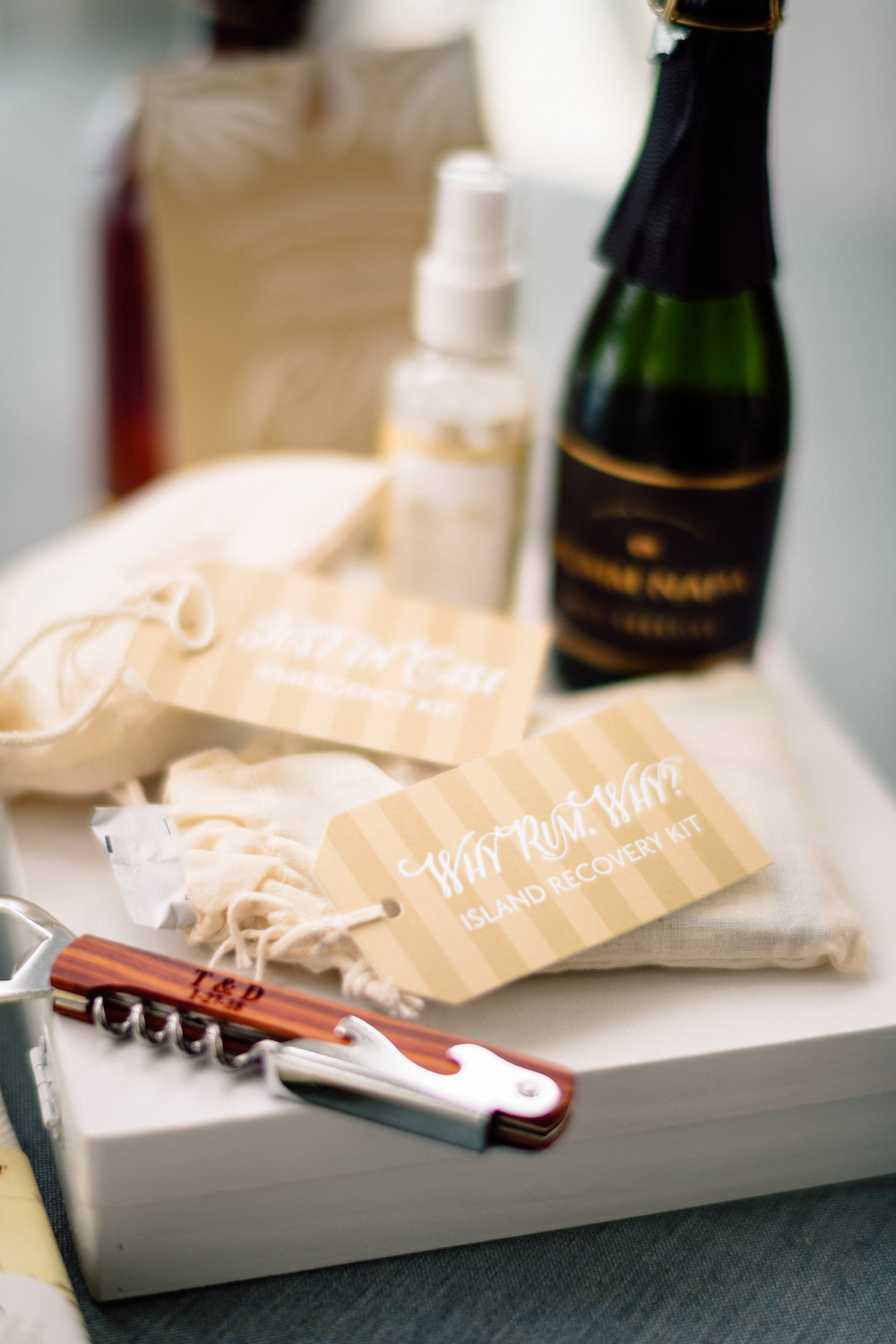 Welcome Kit Hangover Kit Wedding Photography Matt Steeves.jpg