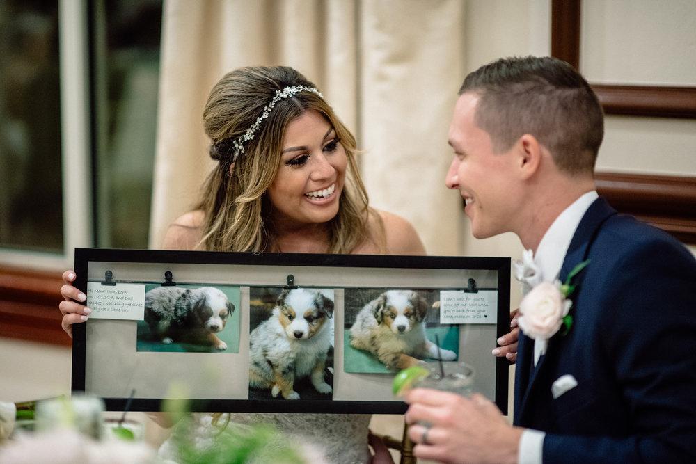Wedding Surprise New Puppy Matt Steeves Photography Naples FL weddings Fort Myers.jpg