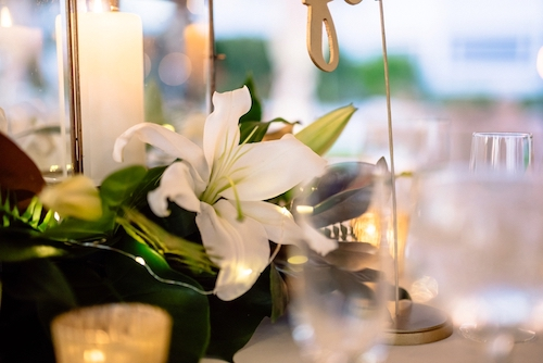 Matt Steeves Photography Casa Ybel Weddings Floral Artistry Sanibel_0151.jpg