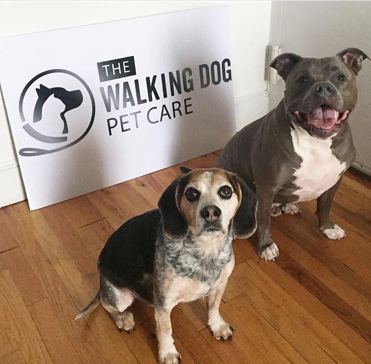 Titan & Bailey