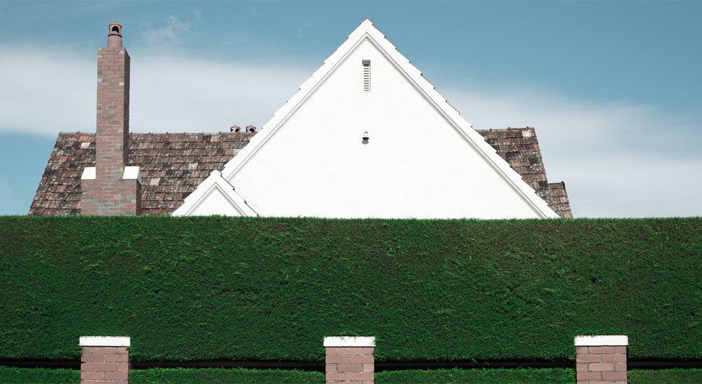 69470-4873440-hedge.jpg