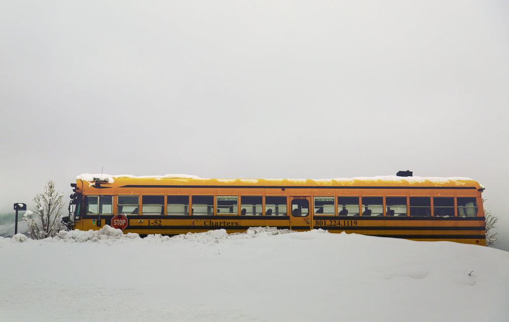 bus copy.jpg