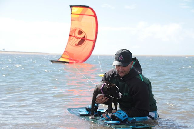 littleZekefirst kite experience #SayNoToPineappleJuice#cabrinha#livefreeridefree#saltysea#seasalt#beachlife#kitefun#kiteboarding#kitesurfing#townbeach#mackaypride#dogslife#4leggedfriends