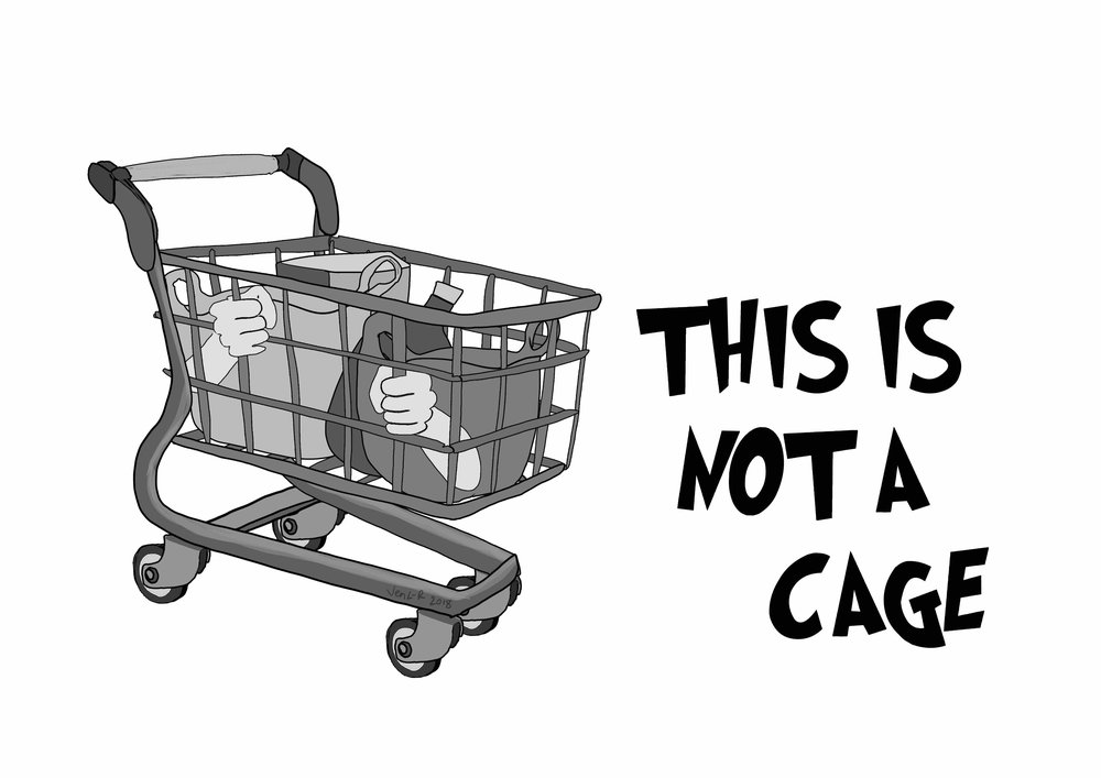 shopping trolley-cage.jpg