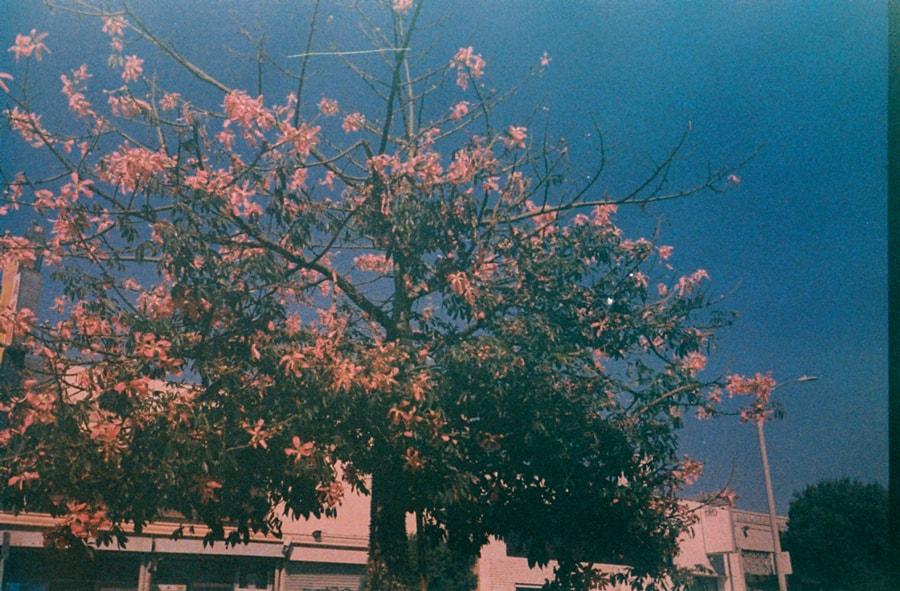 ALEXANDER_SPIT_FILM_03-min.jpg