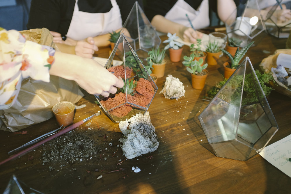 Terrarium Making Party in South New Jersey