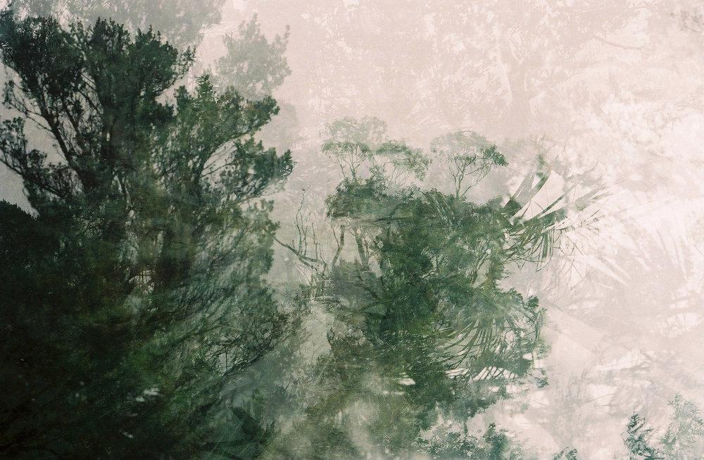 000001-14.jpg