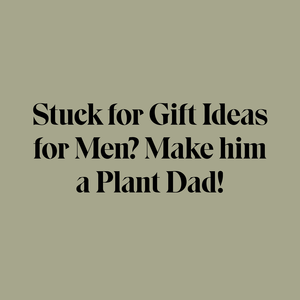 593c9b631868 Why Indoor Plants Make the Perfect Gifts for Men