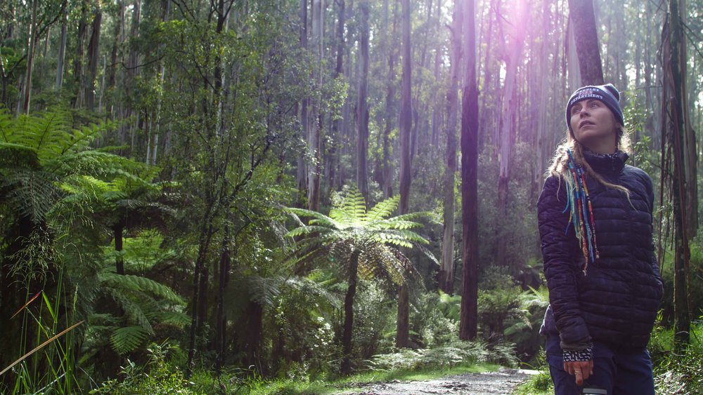 dandedong ranges victoria australia (2 of 12).jpg