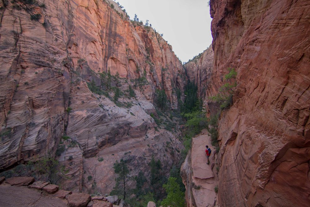 Zion National Park Utah Camping SOuth Campground (4 of 13).jpg