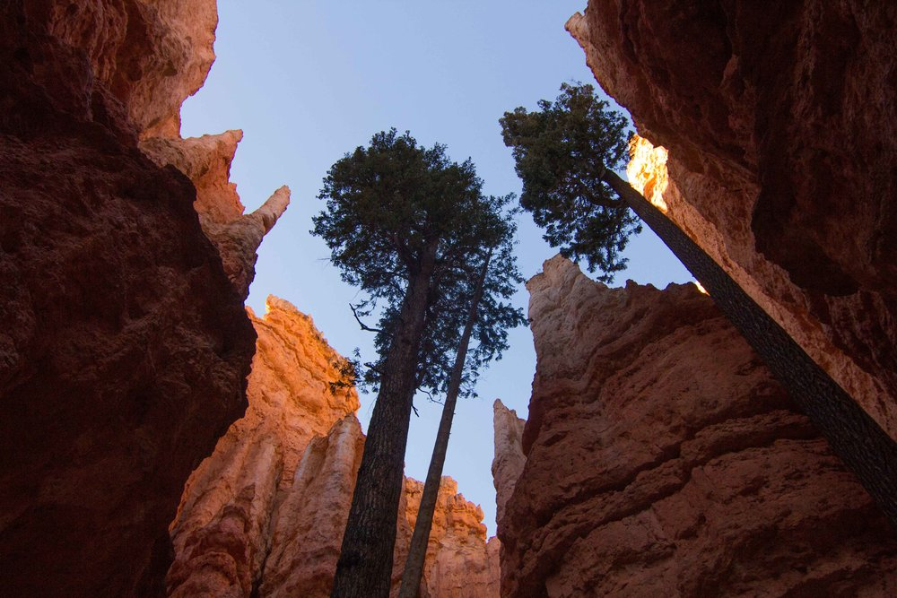 Bryce Canyon National Park (3 of 4).jpg
