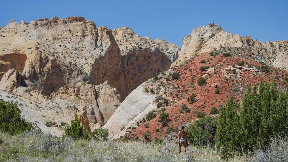 Joshua Tree, Alabama Hills, Death Valley, Zion National Park (34 of 38).jpg