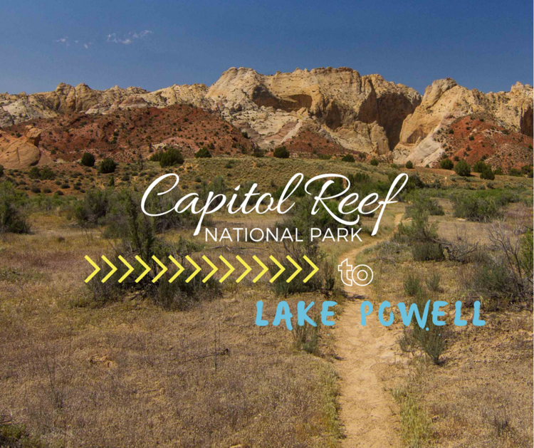 Capitol Reef NP - If you are in the Lake Powell area, don't over look this spot either. If you can't tell, we love Southern Utah. Secret slot canyons and crazy layered mountains.