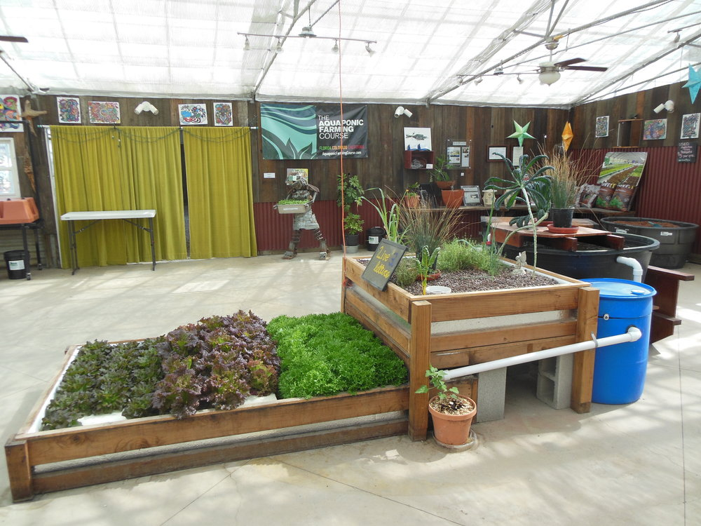This home-size hybrid aquaponic system includes media bed and deepwater culture.