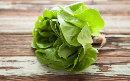 green-butter-lettuce.jpg