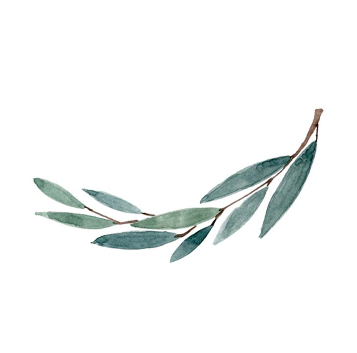 leaf tattoo.jpg