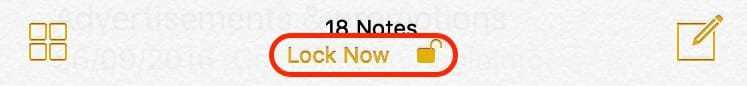 iOS_-_Lock_All_Notes_-_Annotated.jpg