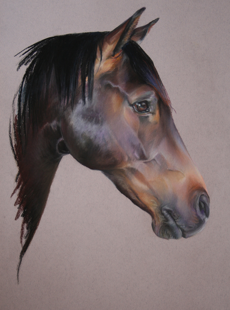 Commission: Whitmarsh. Pastel. 42 x 32cm.