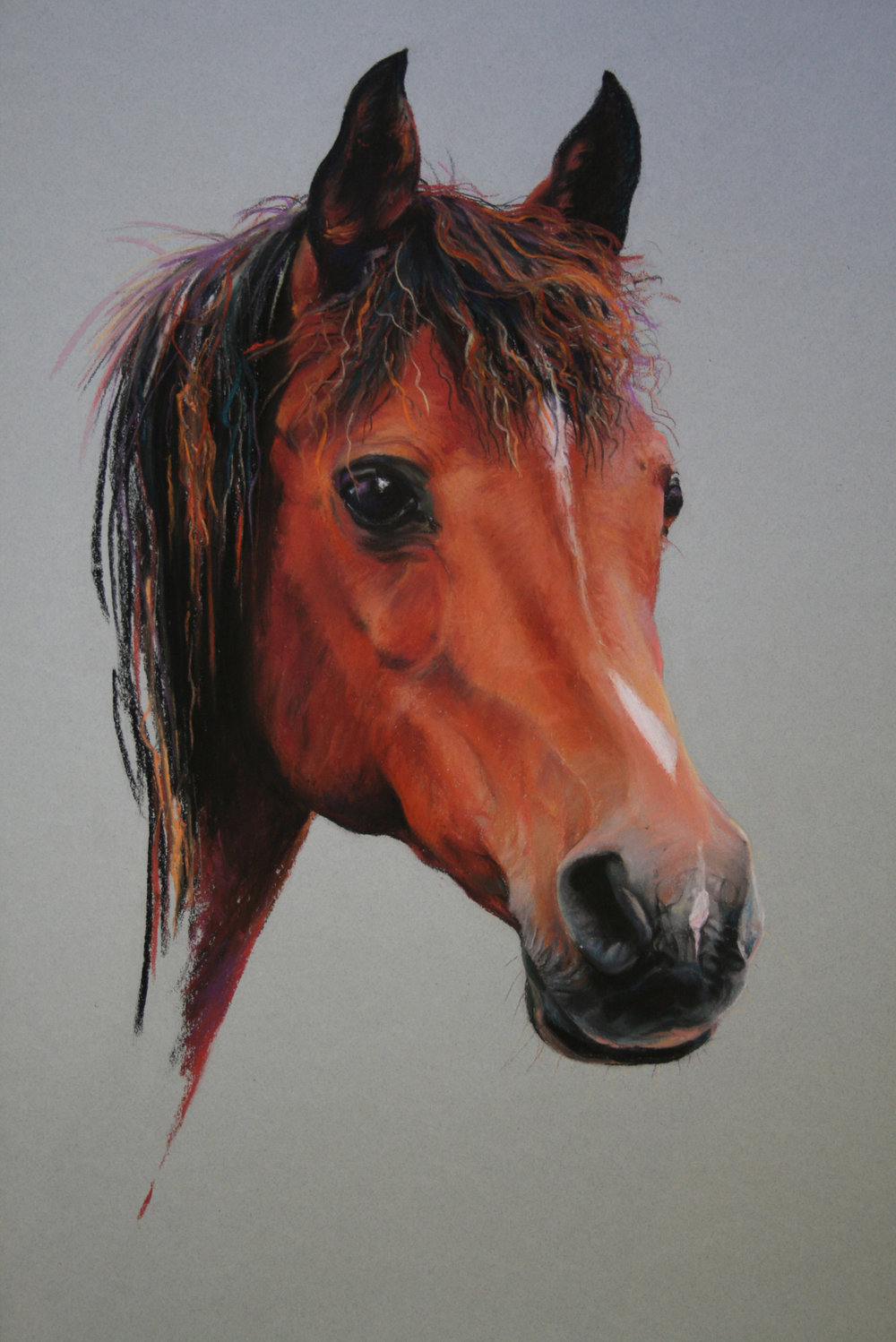Commission: Arab Mare. Pastel. 42 x 32cm.