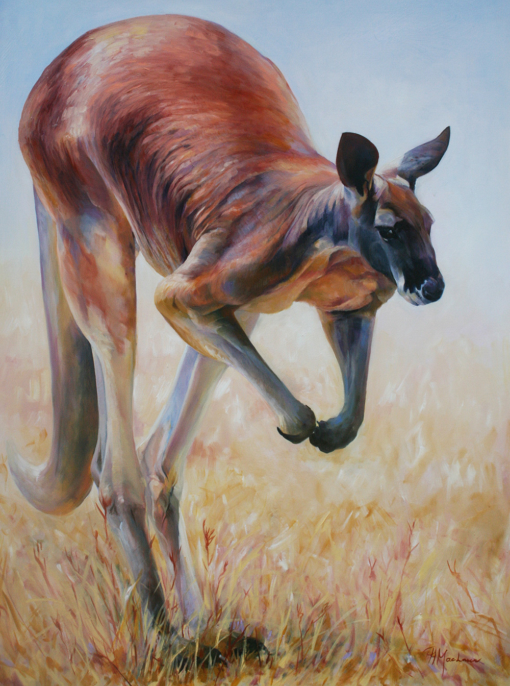'Big Red'. Oil on canvas. 91 x 117cm.