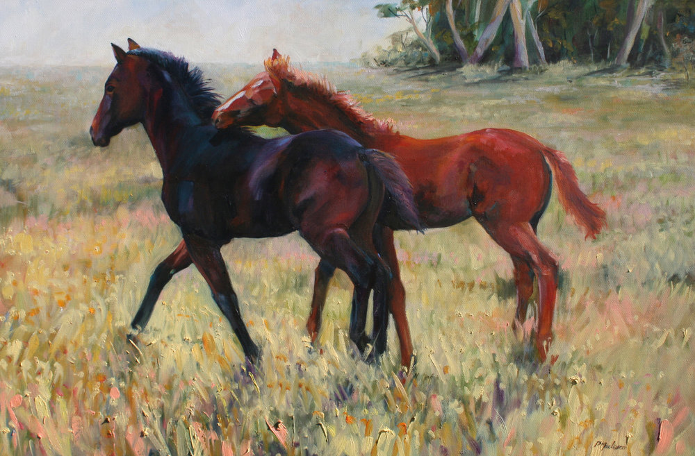 Hope Springs. Finalist: International Equine Art Prize. Oil on canvas. Approx 94 x 54cm framed.