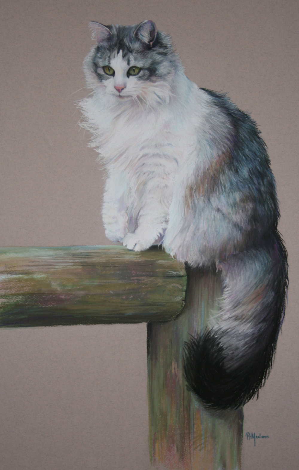 Commission:  Sylvia. Pastel. 65 x 45cm.