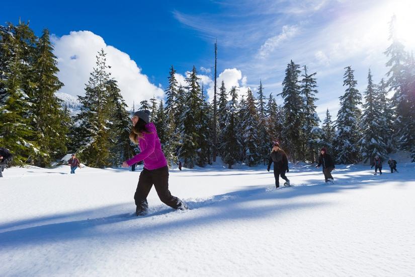 teambuilding-snowshoeing.jpg