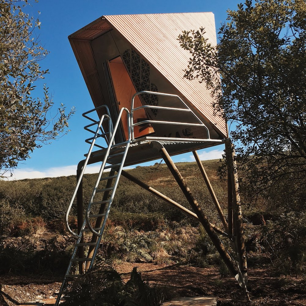 The elevated shelter looks at home in the woods
