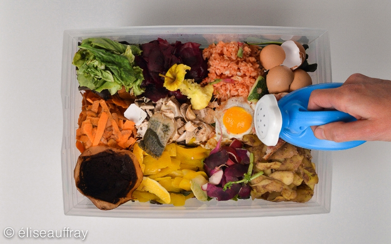 illustration:compostage