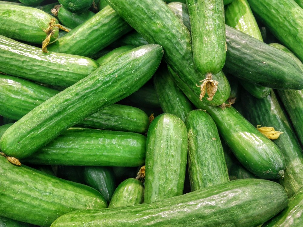 Cucumbers contain antioxidants, including flavonoids and tannins, which prevent the accumulation of harmful free radicals promoting hydration and aiding in weight loss. -