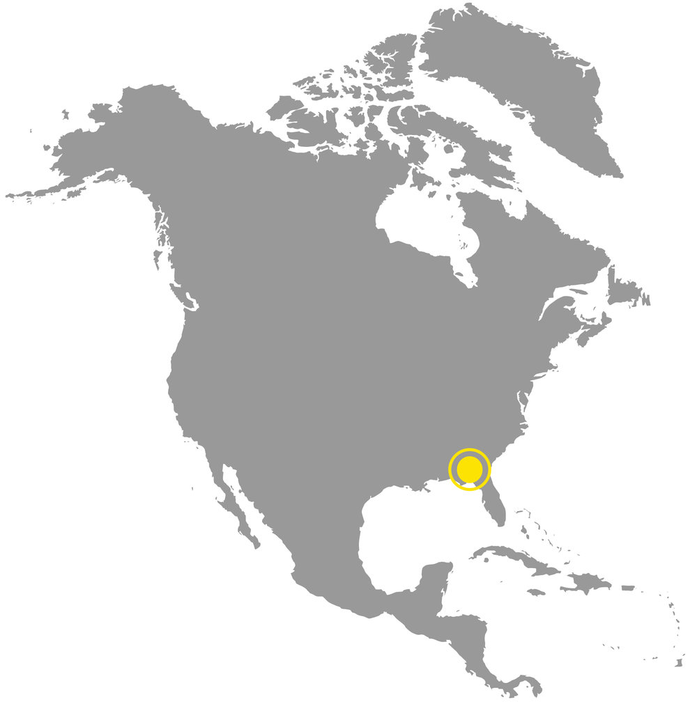 MAP Albany.jpg