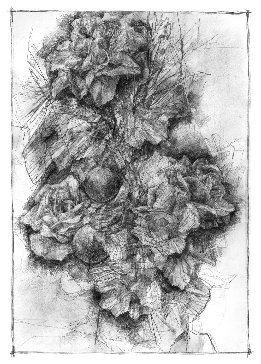 "FOLLYAGE  Graphite on paper, 9.7 x 14"", 2013"