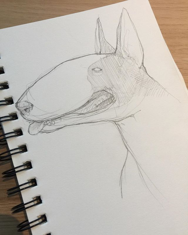 Bull terrier inspired from Lola girl I met last weekend during our painting session with @hadrian_lam and @malic