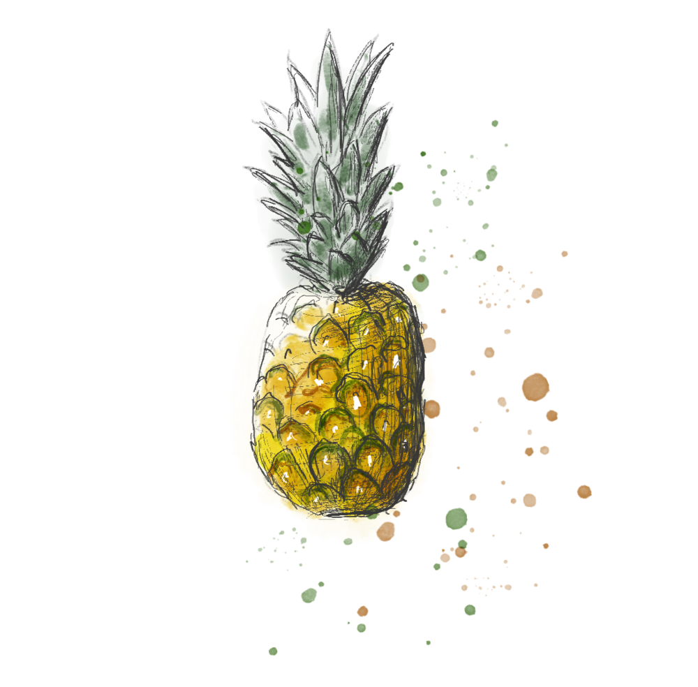 Ananas Illustration