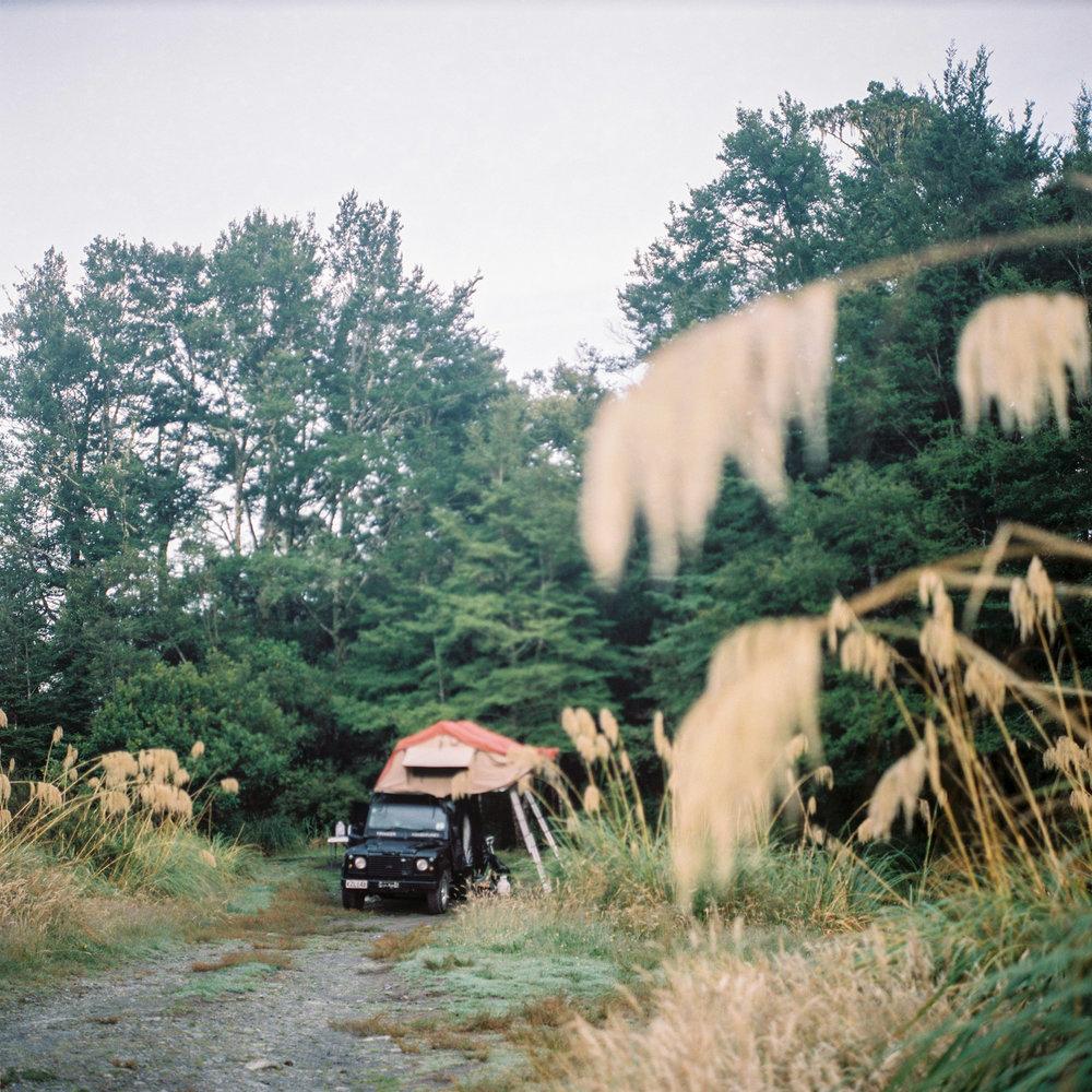 Campieren im Wald in Neuseeland