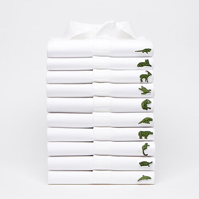 @lacoste are proving just how well #fashion and #philanthropy combine after the limited edition polo shirts released as part of their Save Our Species campaign have completely sold out 🐊 full story on our website • • • • • #lacoste #fashion #luxuryfashion #savethespecies #charity #endangeredspecies #style #mensstyle #luxurylifestyle