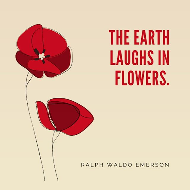 What does your laugh say about you? . . . #HRetreats #quote #quoteoftheday #flowers #earth #nature #motivationalquotes #inspirationalday #inspire #lifeisbeautiful#positivethoughts#positivelife #positivemind #positivethinking #staypositive #spreadlove