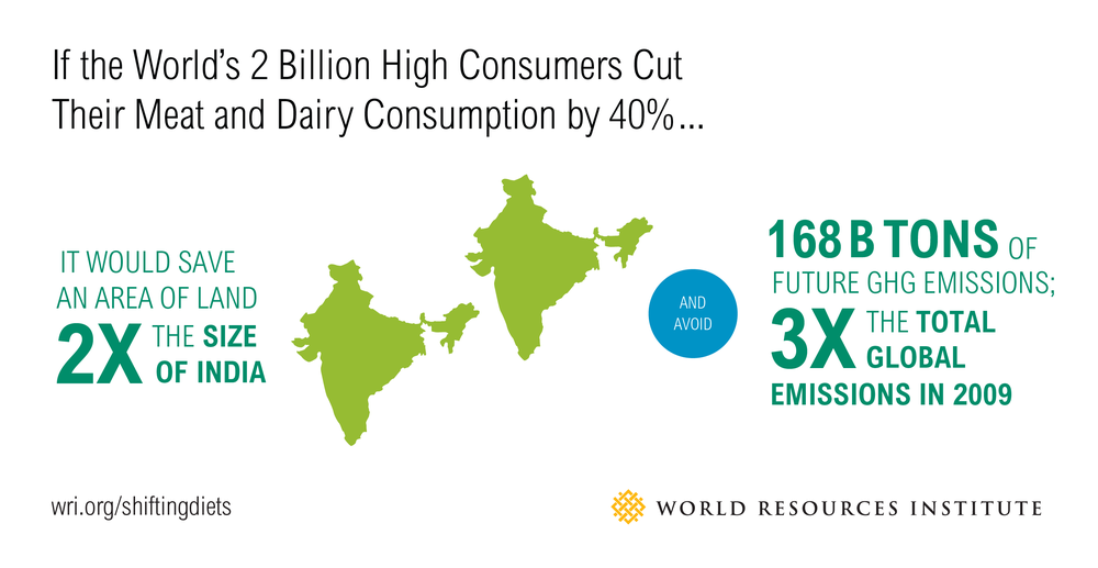 "World Resources Institute (WRI): ""Sustainable Diets: What You Need To Know in 12 Charts"""