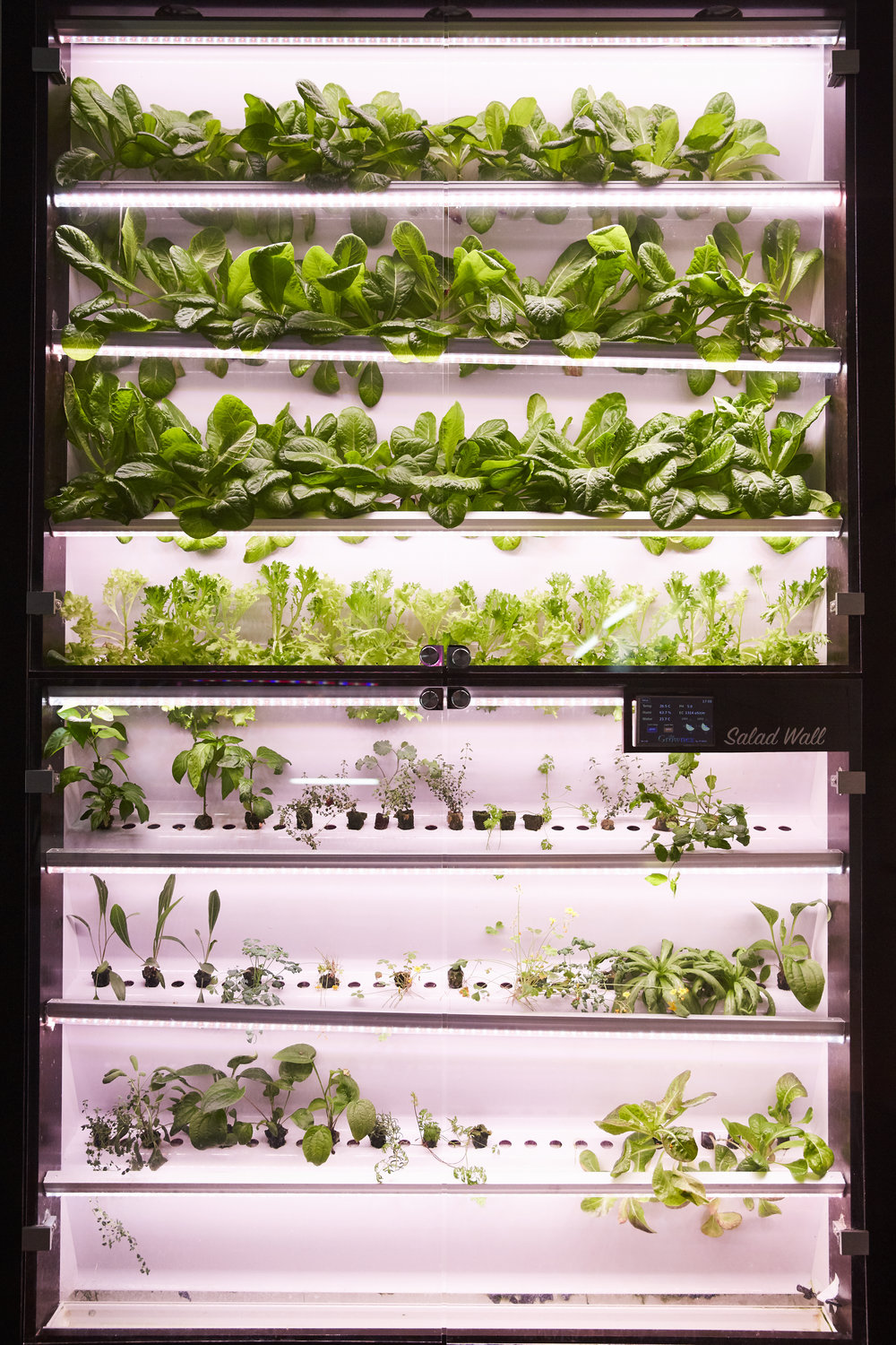 Grow what you want in one of our indoor systems.