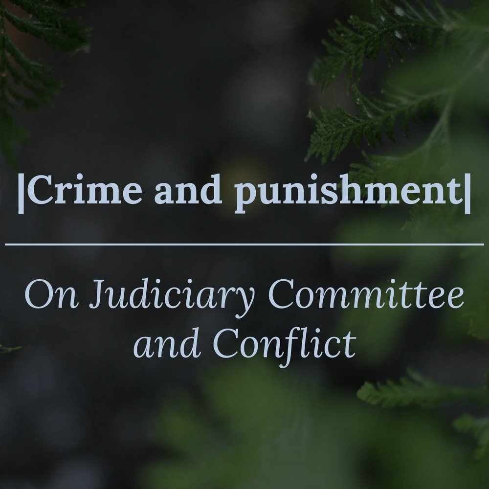 Judicial Committee - Intern Blog