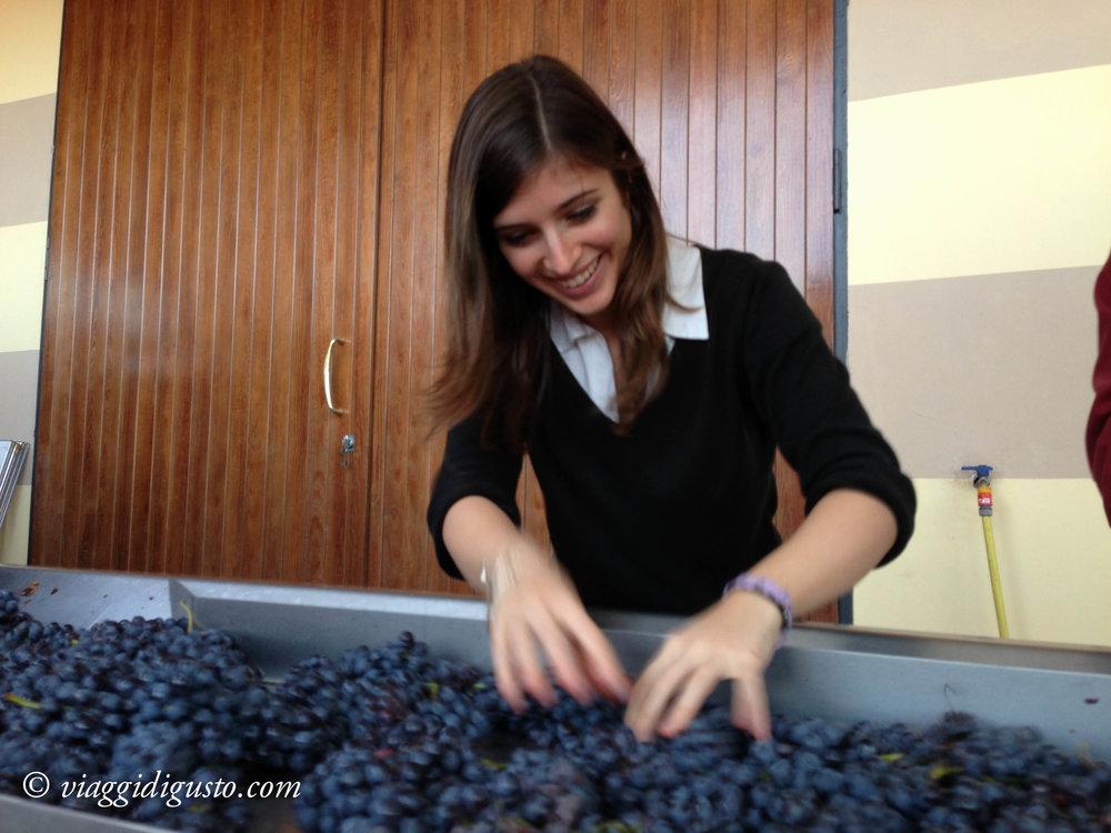 piedmonte & liguria 2012-28.jpg