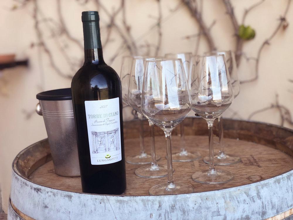 wine tasting, lungarotti winery (umbria)