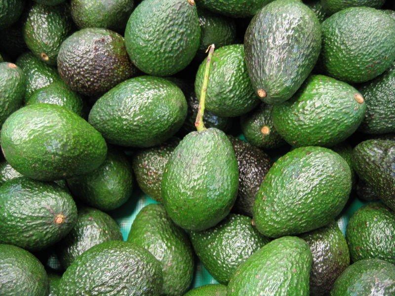 Organic_Avocado_Hass_Fuerte.jpg