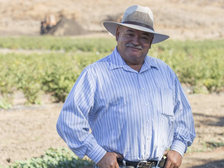 "Valente, Ranch Manager   ""Fairfield Farms is family. Everyone is respectful and enjoys working toward a common goal - Growing great blueberries and avocados."" Since 1995"