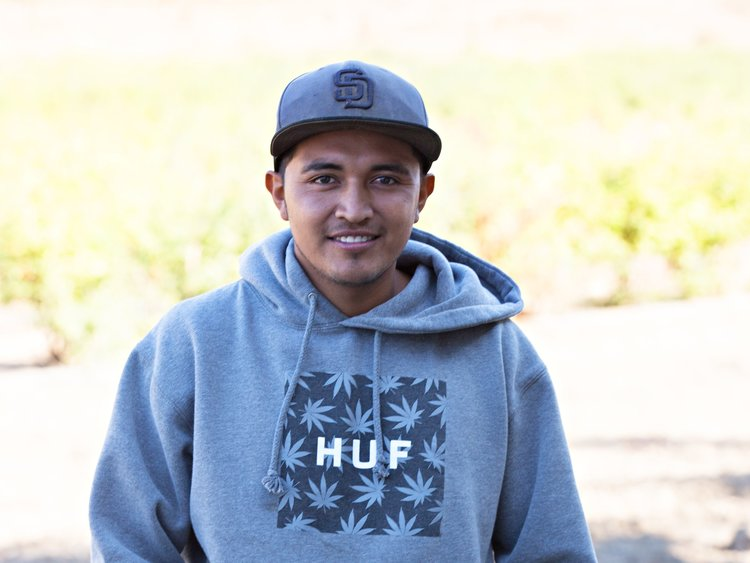 "Javier   ""When it's in harvest season Fairfield Farms gives many jobs to the Hispanic people. At harvest time prepare to work hard, give the best of yourself and you will move up as you gain new skills."" Since 2010"