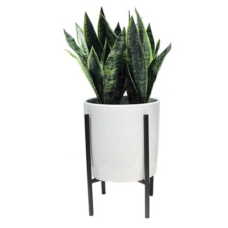 artificial plant in stand large.jpeg