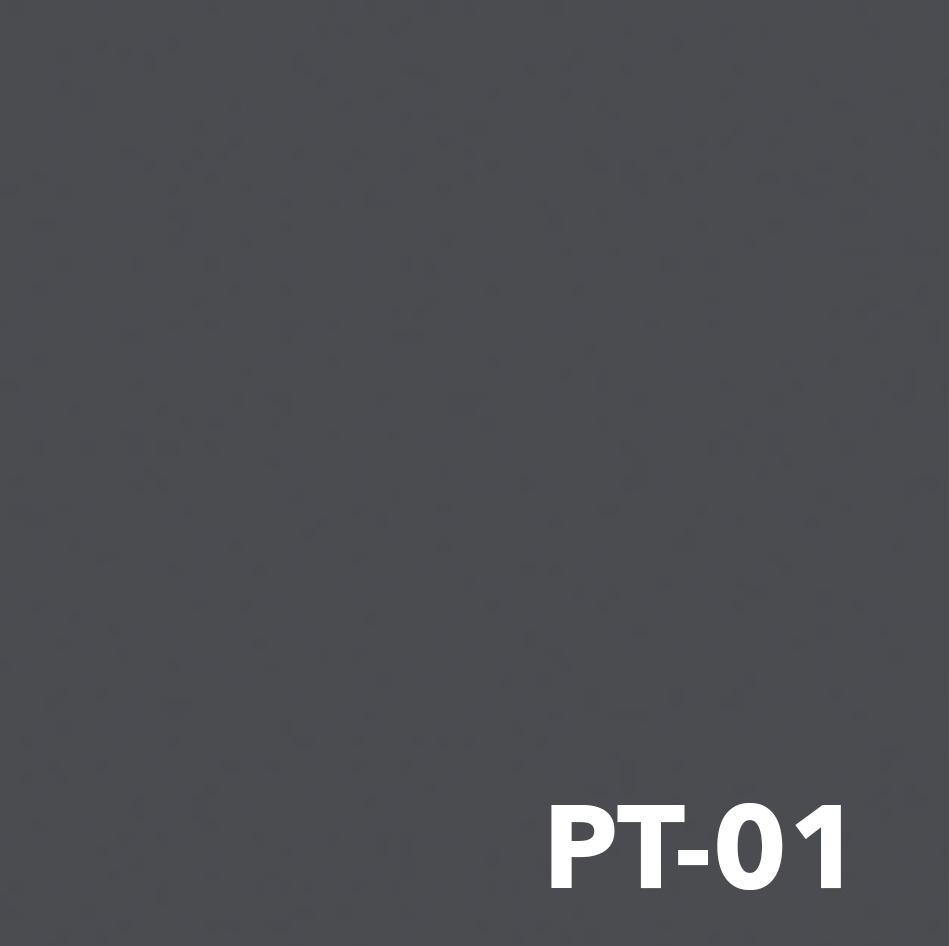 PT-01.jpg