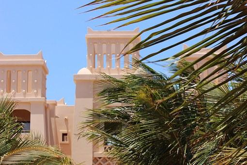 Cape Verde 9 palm fronds.jpg