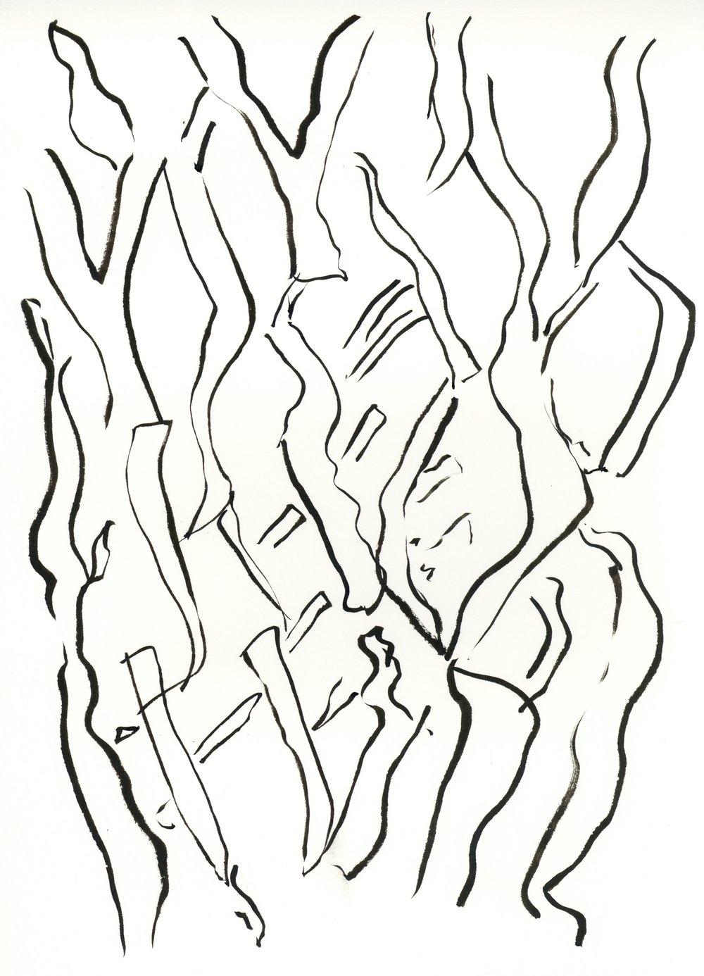 kate lewis art.tree sketch.JPG
