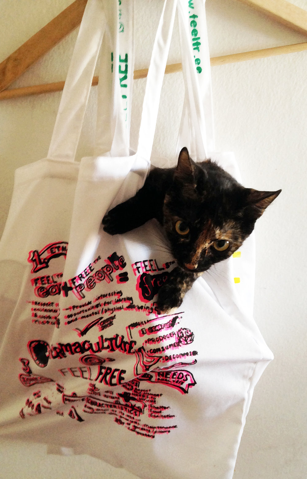 Its International Cat Day! Heres Feel Free boss GOA with one of our new SERyGRAFíAbags. Like number 500 on our page gets a free Feel Freetote bag! Contribute here towards Goa's ferry ticket!